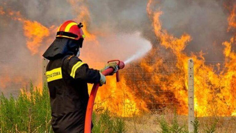 Ηράκλειο: Μια «ανάσα» από τα σπίτια έφτασε η φωτιά