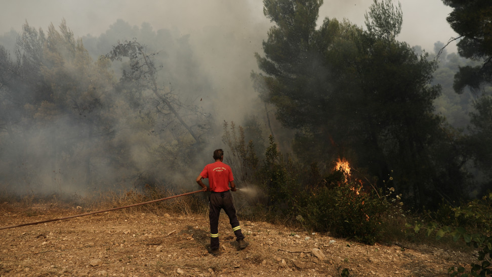 Ηλεία: Φωτιά σε δασική έκταση στον Ξηρόκαμπο- Έσπευσαν εναέρια μέσα