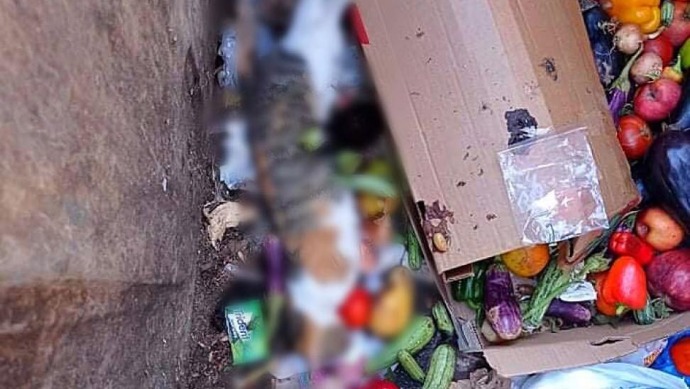 Μαζική δολοφονία αδέσποτων γατιών με φόλες σε Αιγάλεω - Γείτονες καταγγέλλουν την δράστιδα (pics)